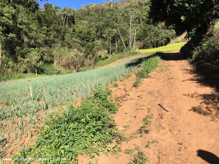 Fazenda / Sítio à venda em Gamboa, Teresópolis - RJ - Foto 9